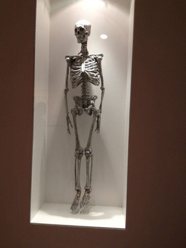 image of skeleton made of small coins